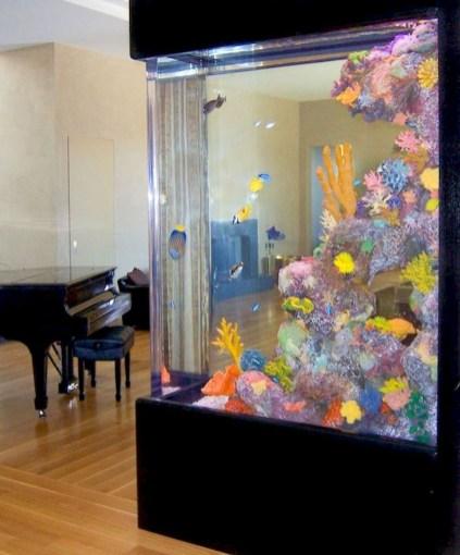 Awesome Aquarium Partition Ideas34