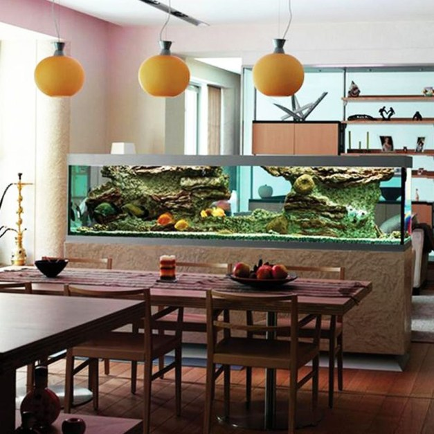 Awesome Aquarium Partition Ideas37