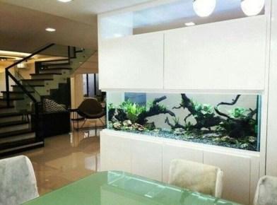 Awesome Aquarium Partition Ideas42