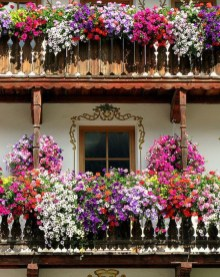 Gorgeous Flower On Balcony Ideas10