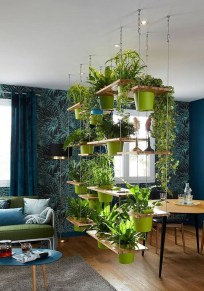 Lovely Display Indoor Plants12