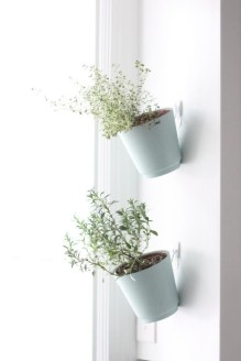 Simple Indoor Herb Garden Ideas For More Healthy Home Air19