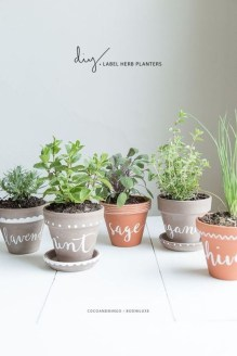 Simple Indoor Herb Garden Ideas For More Healthy Home Air20