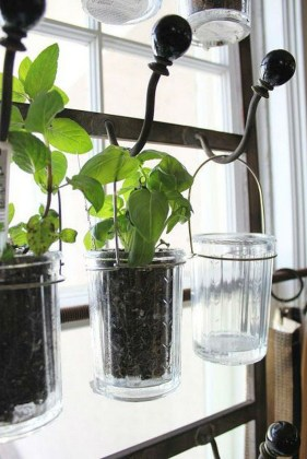 Simple Indoor Herb Garden Ideas For More Healthy Home Air34