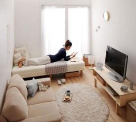 Impressive Apartment Living Room Decorating Ideas On A Budget05