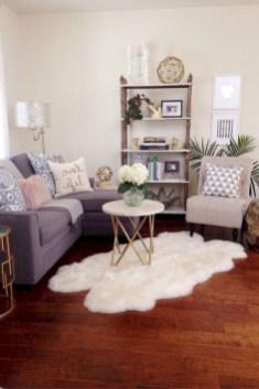 Impressive Apartment Living Room Decorating Ideas On A Budget14