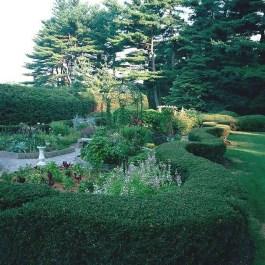 Top Gorgeous Landscape Plan17