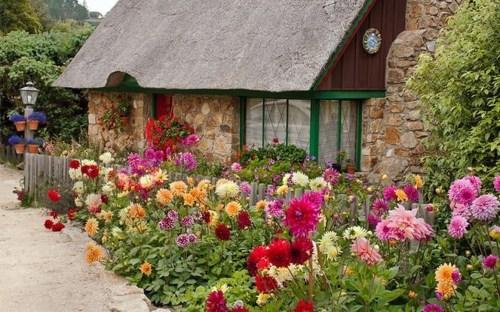Top Gorgeous Landscape Plan19
