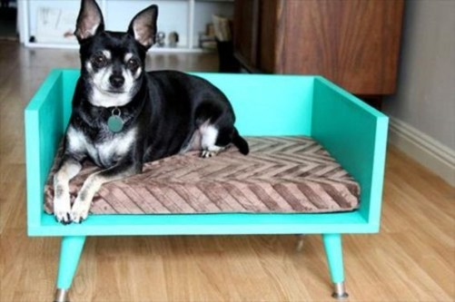 Unique Diy Pet Cage Design Ideas You Have To Copy19