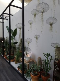 Awesome Indoor Plant Decoration Ideas To Make Natural Comfort In Your Home02