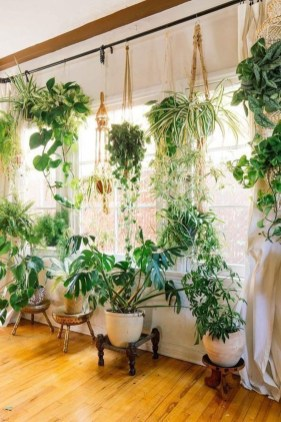 Awesome Indoor Plant Decoration Ideas To Make Natural Comfort In Your Home26