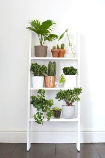 Awesome Indoor Plant Decoration Ideas To Make Natural Comfort In Your Home32