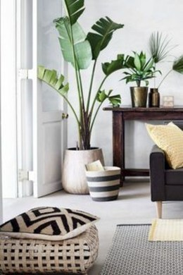 Awesome Indoor Plant Decoration Ideas To Make Natural Comfort In Your Home43
