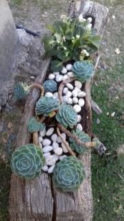 Gorgeous Succulent Garden Ideas For Your Backyard04