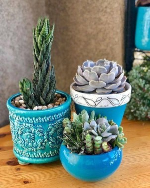 Gorgeous Succulent Garden Ideas For Your Backyard24