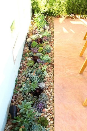 Gorgeous Succulent Garden Ideas For Your Backyard35