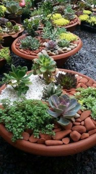Gorgeous Succulent Garden Ideas For Your Backyard47