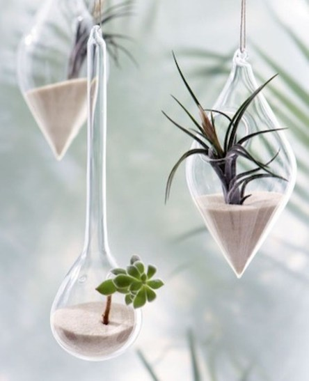 Unique And Beautiful Terrarium Design Ideas To Decorate Your Home09