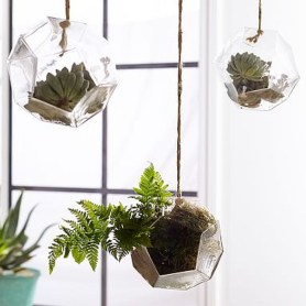 Unique And Beautiful Terrarium Design Ideas To Decorate Your Home23