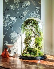 Unique And Beautiful Terrarium Design Ideas To Decorate Your Home31