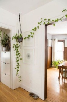 Indoor Garden Design For Easy And Cheap Home Ideas22