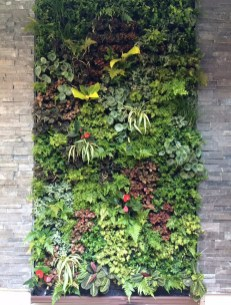 Succulents Living Walls Vertical Gardens Ideas03