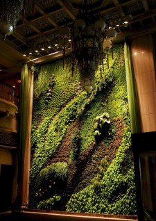 Succulents Living Walls Vertical Gardens Ideas10