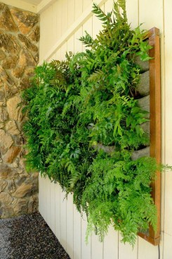 Succulents Living Walls Vertical Gardens Ideas17