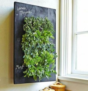 Succulents Living Walls Vertical Gardens Ideas20