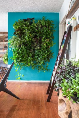 Succulents Living Walls Vertical Gardens Ideas34
