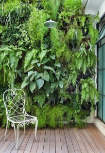 Succulents Living Walls Vertical Gardens Ideas47