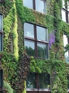 Succulents Living Walls Vertical Gardens Ideas48