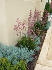 Beautiful Flower Beds Ideas For Home11