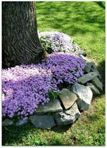 Beautiful Flower Beds Ideas For Home14