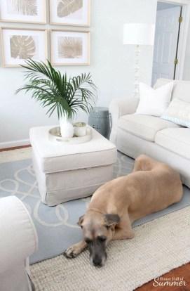 Elegant Coastal Themed Living Room Decorating Ideas16