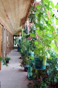 Unique Garden Decorating Ideas05