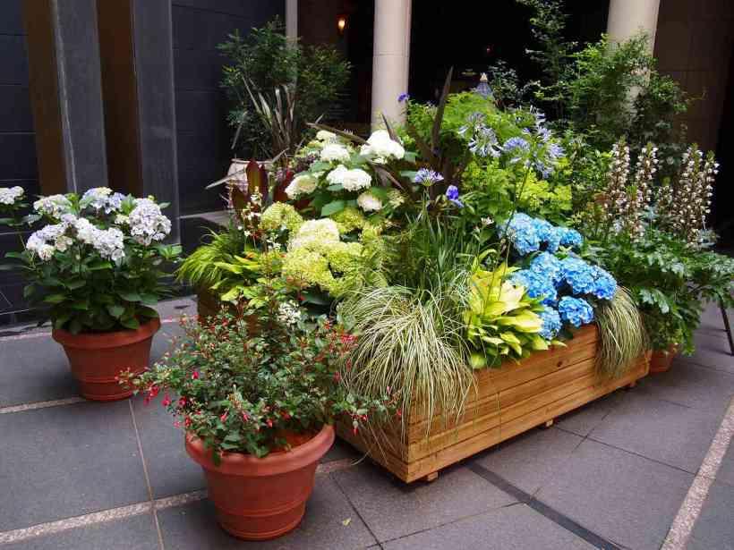 Beautiful Flower Box for Modern Patio