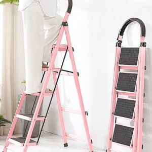 5 Steps Ladder- The Rack Ladder Series