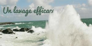 Read more about the article Un lavage efficace