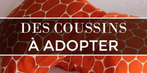 Des coussins à adopter