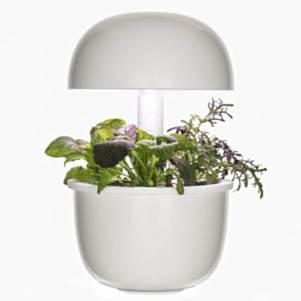 Smart Garden.