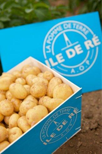 Délicieuses pommes de terre...