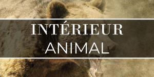 Intérieur animal