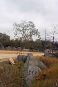 Zoo de Vincennes 35