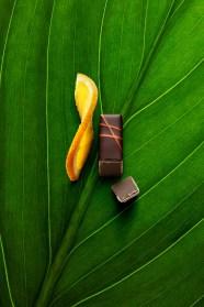 Orange ©Thomas Dhellemmes
