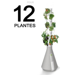 Read more about the article Le Home potager