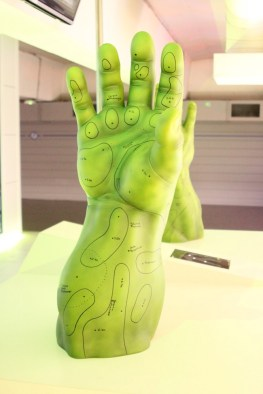 hulk bras arm