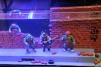 Teenage Mutant Hero Turtles im Aquarium