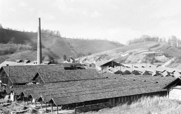 Mariborska opekarna leta 1960