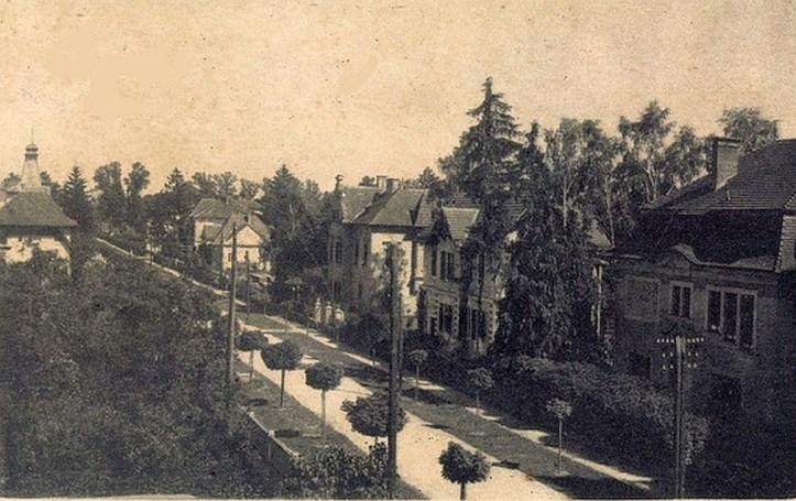 VILE-MLADINSKA